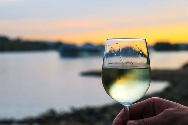 vinos blancos secos