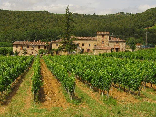 ruta-del-vino-toscana