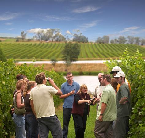enoturismo vino turismo