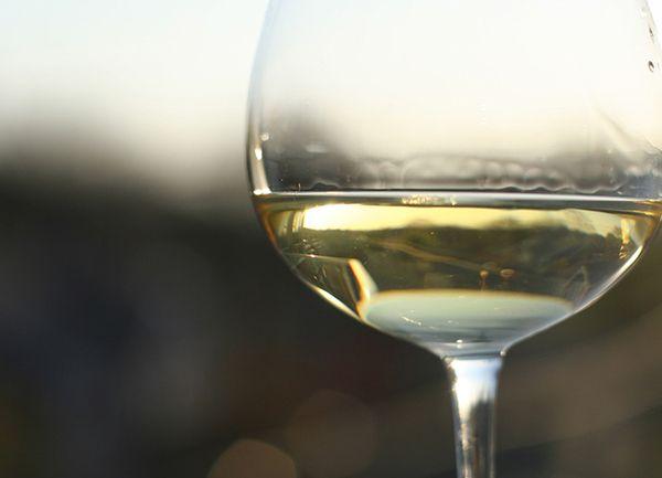 vinos blancos afrutados
