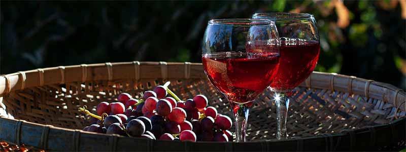 vino sin sulfitos